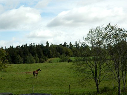 Creekside Equestrian Center Inc., Antigonish, Nova Scotia